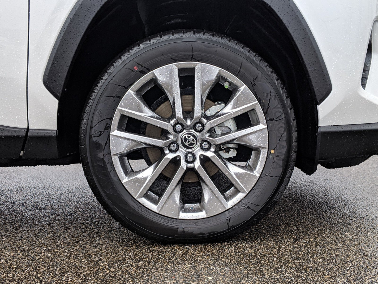 New 2019 Toyota Rav4 Xle Premium Sport Utility In Tallahassee Rear Suspension Parts D004939 Legacy